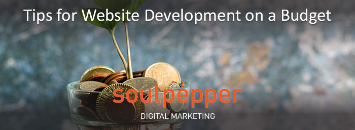 Website Development on a Budget | Soulpepper Digital Marketing